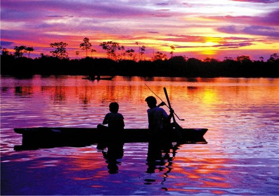The Amazon is responsible for almost 20 percent of the Earth's fresh water entering the ocean.